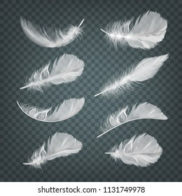 Feathers feather vector white falling easy realistic illustration set isolated on transparent background