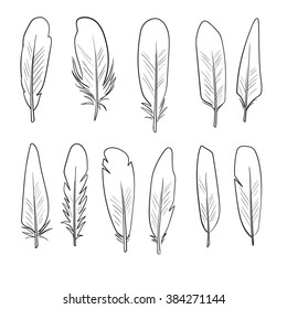 Feathers graphics  set