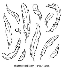 Feathers rooster set. Hand drawn vector illustration.