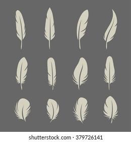 Feathers set on dark background