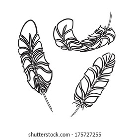 Feathers sketch style. Plumelets - doodle elements for your design .Vector illustration