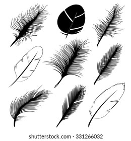 Feathers; vector set