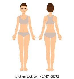 Female body chart, front and back view. Young woman in underwear, vector clip art for medical infographics and fashion illustration.
