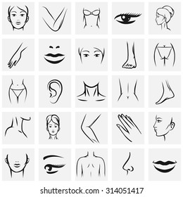 Female body parts icons set. Femininity fashion contour beauty, knee and ass, hand and foot, lip and mouth, vector illustration