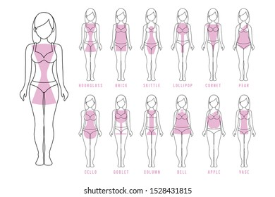 Female body shape types: apple, pear, hourglass, brick, column, cello, bell, skittle, lollipop, cornet, goblet, vase. Vector illustrations, flat style isolated on a solid background, line art
