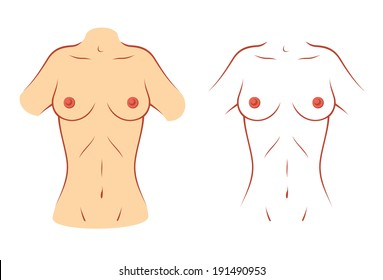 Female body silhouette front belly