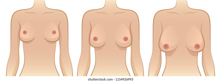 Female breast of different sizes on a white background