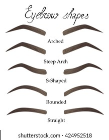 Female eyebrows in different shapes. Female eyes with different forms of eyebrows Vector eyebrows realistic and cartoon style. Collection of isolated women's sketch eyebrows.