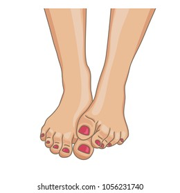 Female feet, barefoot, front view. One foot lying on the other. Toenails with pedicure. Vector illustration, hand drawn cartoon style isolated on white.