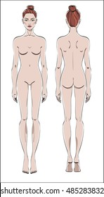 Female figure: front and back. Color vector. Human body in linear style.