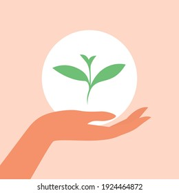 The female hand carefully holds the green sprout of the plant. The concept of caring for the environment. Vector flat illustration.