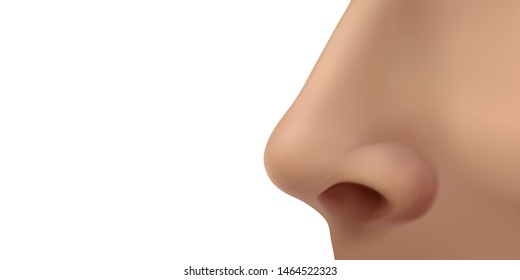 Female human nose on the face. Profile view. Vector illustration isolated on white background.