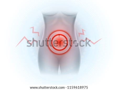 Female Lower Abdominal Pain Pelvic Pain Stock Vector Royalty Free