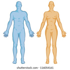 Female male body shapes � human body outline � vector - anterior view - full body