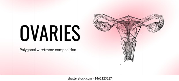 Female uterus and ovaries abstract scientific background, reproductive organs treatment concept on a beautiful abstract bright science backdrop