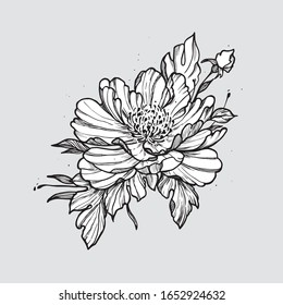 Feminine tattoo sketch. Hand drawn line peonies in graphic style. Spring floral blooming, black and white illustration. Tattoo art