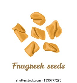 Fenugreek seeds isolated on white background. Vector illustration of seasoning in cartoon simple flat style.