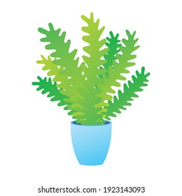 Fern plant leaves in a pot, beautiful green houseplant isolated vector.