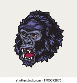 Ferocious gorilla head colorful vintage concept isolated vector illustration