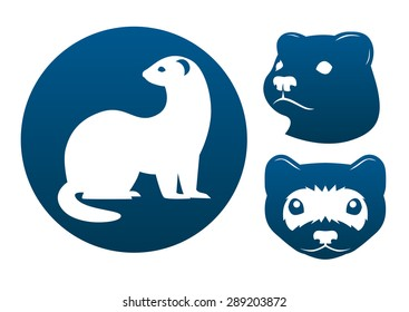 Ferret blue vector signs on the white background.