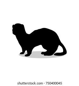 Ferret weasel ermine mammal black silhouette animal. Vector Illustrator.