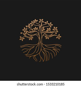 Fertile tree logo for the health logo of natural and agricultural medicine