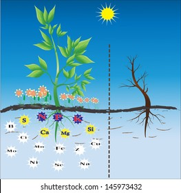 Fertilizers / nutrients needed for plants. Background