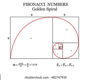 The Fibonacci spiral (also known as the Golden Spiral) with basic formulas on white background, vector illustration
