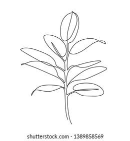 Ficus plant one line drawing. Hand drawn modern minimalistic design for creative logo, icon or emblem.