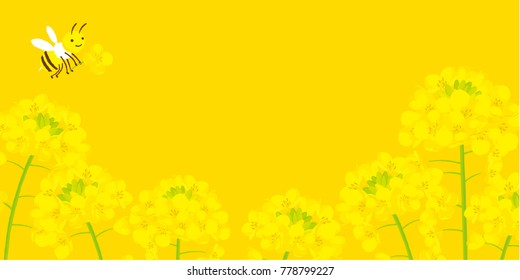 field of canola flower with  bee illustrations