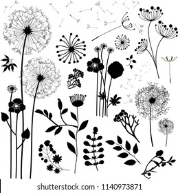 Field of dandelion flowers. Black silhouettes of summer plants on a white background. Contour glade with dandelions and flying seeds. Illustration for children. Vinyl sticker on the wall. Flower tat