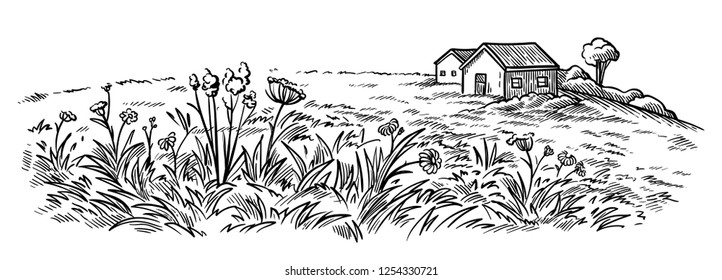 field near the village houses in the background and flowers vector illustration