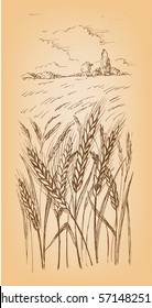 Field of Wheat, Barley or Rye in graphic style