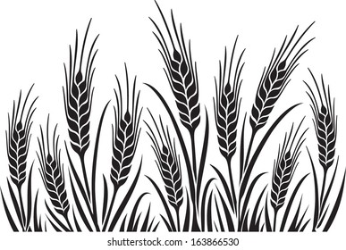 Field of Wheat, Barley or Rye vector visual illustration, black on white background, ideal for bread packaging, beer labels etc.