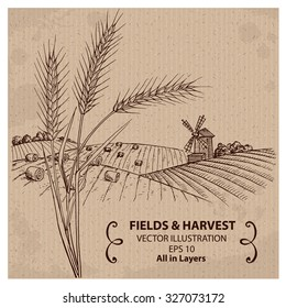 Fields with Harvest and Wheat. Hand drawn vector Illustration