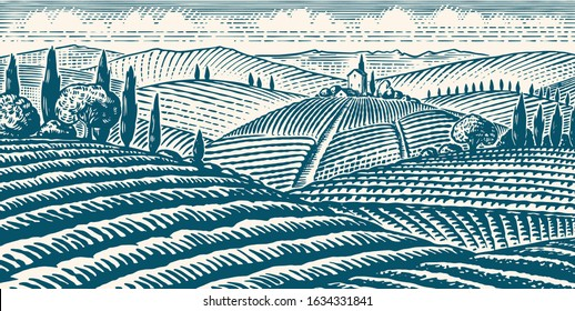 Fields and hills of Tuscany. Scenic view of vineyards. Wide panoramic vine plantation in Chianti. French or Italian engraved landscape. Hand drawn monochrome vintage horizontal sketch.