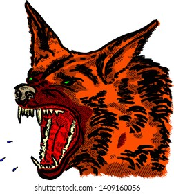 A fierce snarling wild wolf baring its fangs for Halloween concept. Hand drawn vector illustration.