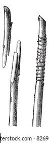 Fig. 2 English transplant or whip grafting vintage engraving. Old engraved illustration of Whip Grafting, showing the tongues prepared and after-ward bound together. Trousset encyclopedia 1886 - 1891