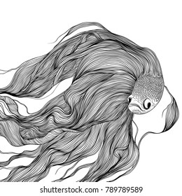 Fighting fish swimming, black and white line art ink drawing