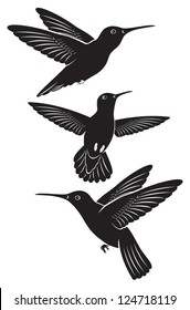 The figure shows a bird hummingbird