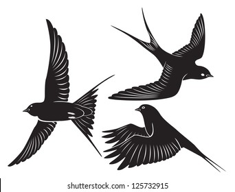 The figure shows a bird swallow