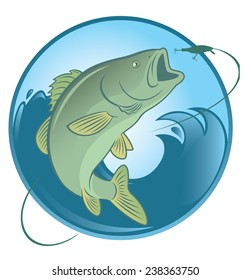 the figure shows fish bass