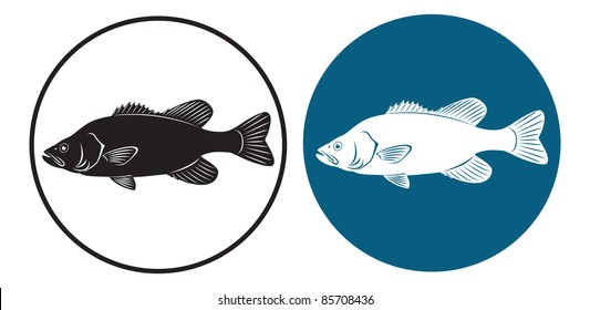 the figure shows the fish bass