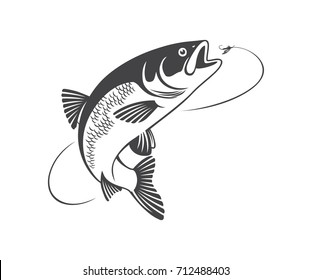 the figure shows the fish chub