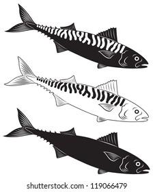 The figure shows a fish mackerel