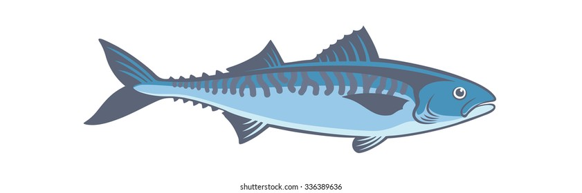 The figure shows a fish mackerel