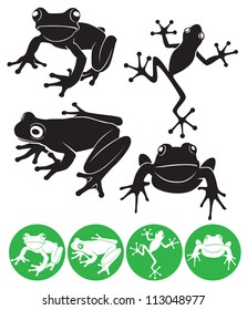 The figure shows a frog