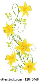 Filigree tendril with daffodil flowers. Happy Easter. Colorful spring flowers with leaves.