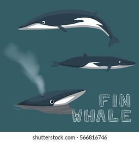 Fin Whale Cartoon Vector Illustration