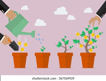 Financial growth process. Planting process business metaphor